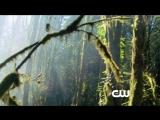Сотня/The 100 (2014 - ...) Трейлер (сезон 1)