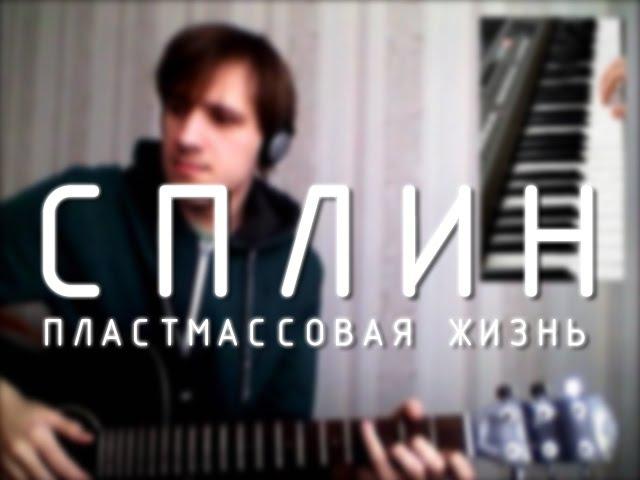 Сплин - Пластмассовая жизнь (guitar cover flute)