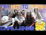 [CHALLENGE] Try not to laugh challenge | А сколько продержишься ты?