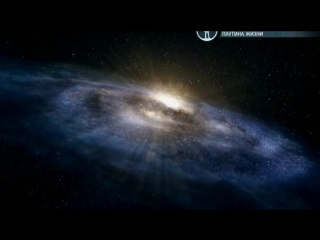 BBC | Чудеса жизни | Серия №3 - Wonders of Life (2013)