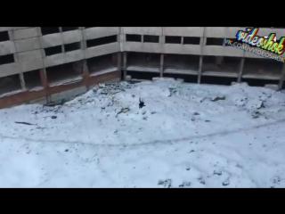Video Shok №262 :: Что-то пошло не так