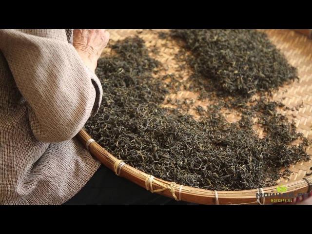 Гуанси-чжуанский АО. Любао Чжень. Чай любао из Учжоу.