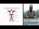 Топографическая анатомия и оперативная хирургия головы