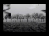 Андрей Макаревич - Я хотел бы пройти сто дорог