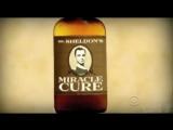Промо + Ссылка на 6 сезон 10 серия - Теория большого взрыва  The Big Bang Theory