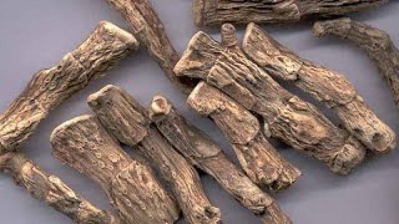 Корень аира: лечебные свойства и противопоказания