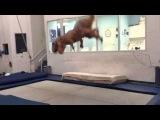 T-Rex jumps on trampoline