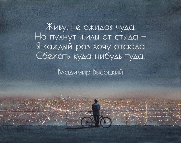 http://cs633520.vk.me/v633520072/2a9d8/XmXl0p2SZZw.jpg