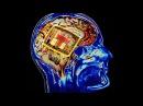 Психотронное оружие как скрытый метод манипуляции