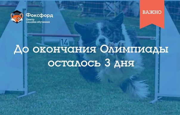 Напоминаем, что Олимпиада Фоксфорда завершится уже через 3 дня → http://foxford.ru/I/bg