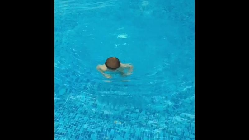 РЫбёнок мой))Ныряет за попрыгунчиком🐟 Он так не любит одежду, неудивительно что именно плавание ему душе👌🏼😅🐬