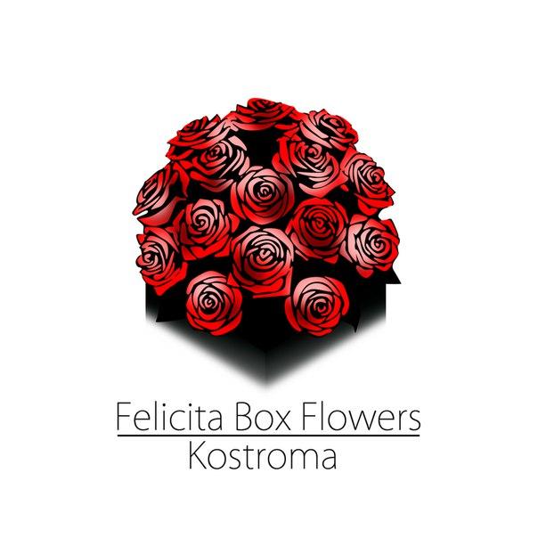 Felicita Box-Kostroma