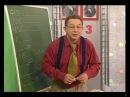 Математика 73 Умеют ли животные считать Измерение высоты зеркалом Академия занимательных наук
