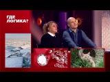 Где логика?: Владимир Селиванов и Валя Мазунина vs. Руслан Белый и Юля Ахмедова - Четвертый раунд