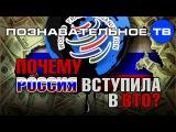 Почему Россия вступила в ВТО (Познавательное ТВ, Евгений Фёдоров)