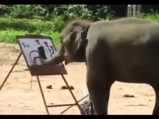 То чувство, когда слон рисует лучше меня