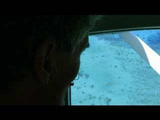 Жизнь на Большом Барьерном рифе 01