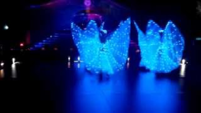 LED Butterfly performance
