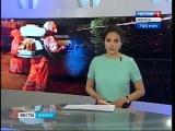 Травля горностаевой моли началась в Иркутске,