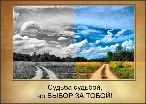 https://pp.vk.me/c633524/v633524138/df20/RPtlWlijsKQ.jpg