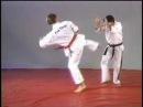 Hapkido side kick defense