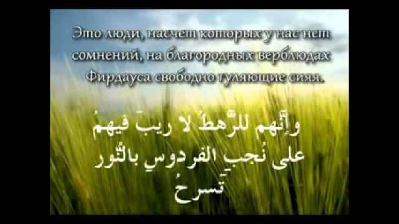 Хайа стих Абу Дауда об акыде ахли сунна