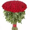 Доставка цветов в С-Пб.  Роза 70 см - 59 рублей