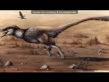 Bird are Dino под музыку Неизвестный исполнитель - Музыка из бара(звездные войны). Picrolla