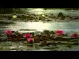 Nana Caymmi - Dois Cora