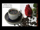 Cafeaua de dimineata (Morning Coffee)