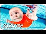 Самое интересное видео в мире №117. The most interesting in the world #117