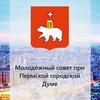Молодежный парламент города Перми