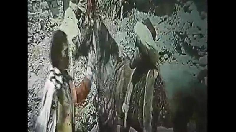 Михай Волонтир в роли господаря в культовом фильме