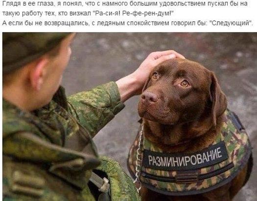 Мины остаются одной из ключевых проблем, стоящих перед Украиной из-за войны, - Ирина Геращенко - Цензор.НЕТ 1129