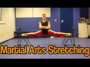 Martial Arts Stretching Get High Kicks Splits GNT Tutorial