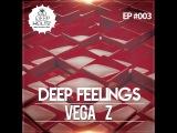 DEEP FEELINGS #003 mix by Vega Z