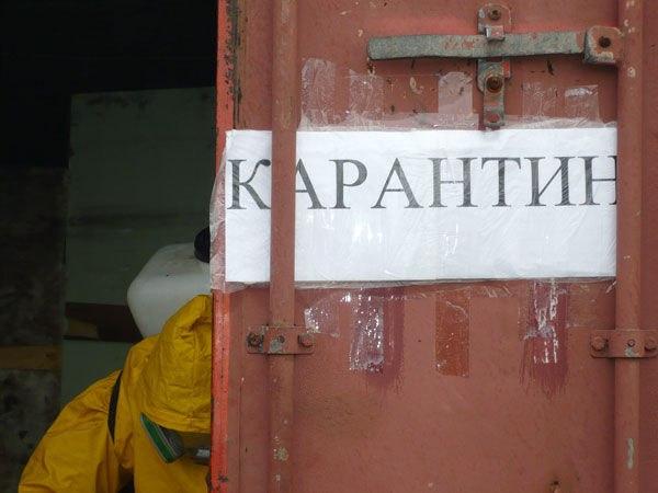 Один из районов Ростовской области оздоровлен от бешенства