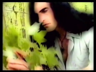Type O Negative - Angel (Tears of Passion)