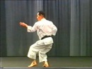 Asai-ha Shotokan-ryu Kata - Kakuyoku Shodan 鶴翼初段
