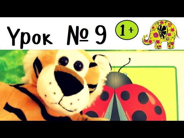 Развивающие игры для малышей Детские книги Школа семи гномов Урок 9 ЦВЕТНЫЕ КАРТИНКИ