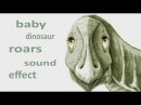 The Animal Sounds: Angry Baby Dinosaur Roars - Sound Effect - Animation