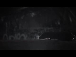Руставели [Следы на песке (2013)] – Монотонная Песня