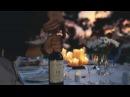 Experience Cono Sur Vineyards Winery