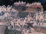 Отношение к Бандар-логу в мире Киплинга соответствует отношению к касте париев в Индии[7].
