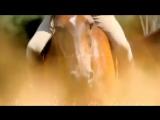 1 день из жизни конников