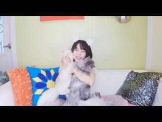 Showry (쇼리) - 쇼리&고양이) 고양이 마약 빨아먹기
