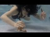 Showry (쇼리) - 쇼리의 물속에서 족발사냥