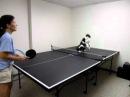 Cat Playing Ping Pong