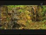 Искатели  Охота на Ростовского зверя