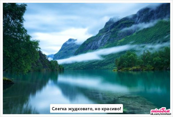 Фото №404335421 со страницы Діаны Софяк